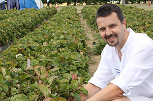 Hort LINK scientist will explain deficit irrigation, saying growers use on average 78 tonnes of water to produce one tonne of fruit - image: Brian Lovelidge