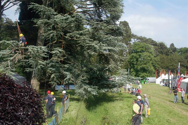 ARB Show: 85 exhibitors attended annual event at Westonbirt Arboretum in Gloucestershire earlier this month - image: HW