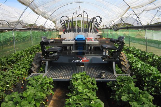Agrobot begins field trials - image: Agrobot