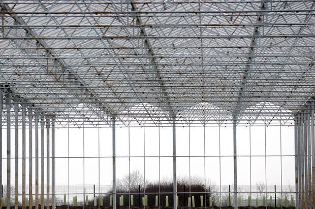 The Arium: Leeds' efficient glasshouse to be complete by July before operations move over from Red Hall nursery
