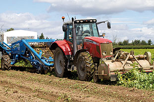 Recent analysis of potatoes on one farm found damp caused 20% yield losses - image: Malcolm Couzens