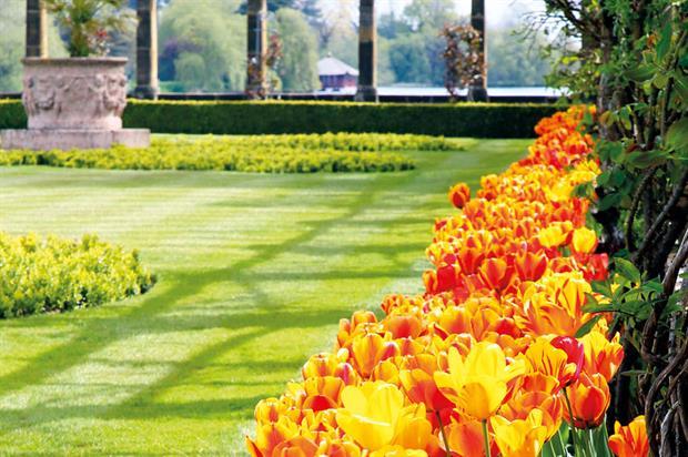 Hever Castle & Gardens: Tulip Celebration being held - image: Hever Castle & Gardens
