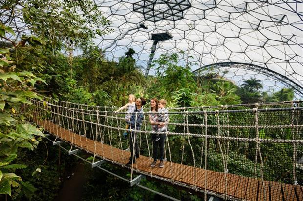 Eden's Rope Canopy Bridge. Image: The Eden Project