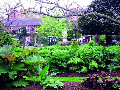London's Chelsea Physic Garden: Venue for Custodian Awards, 30th June