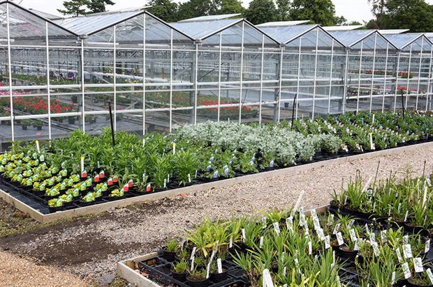 Garden Design Nursery garden design nursery in
