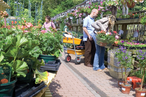 Garden centre customers typically may visit, look, think, go to the website, order and collect or arrange a delivery - image: David Martyn Hughes/Alamy