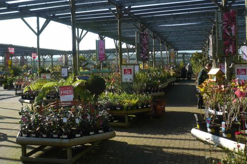 Best retail nursery - Woodlands Nursery & Garden Centre, Leicestershire - image: HW