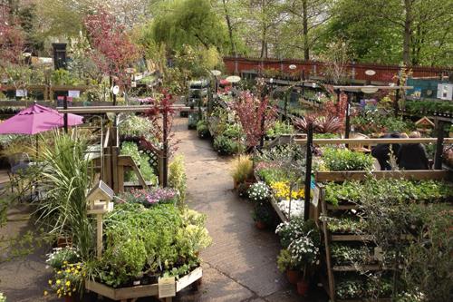 Urban Garden Centre of the Year - Camden Garden centre - image: Camden GC