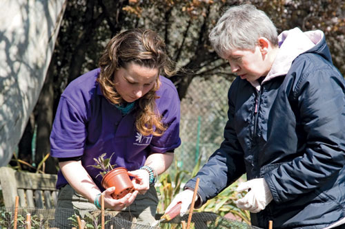 Charities and local councils champion horticulture to help vulnerable groups - image: Thrive