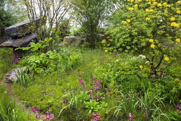 The Laurent-Perrier Chatsworth Garden - Image HW