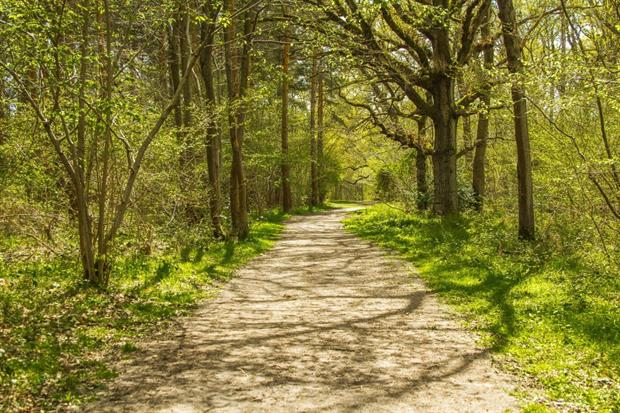 New Forest School among projects supported by London mayor Sadiq Khan. Image: Pixabay