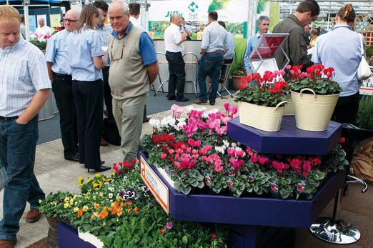 Four Oaks Trade Show - image: HW