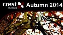 Crest autumn catalogue