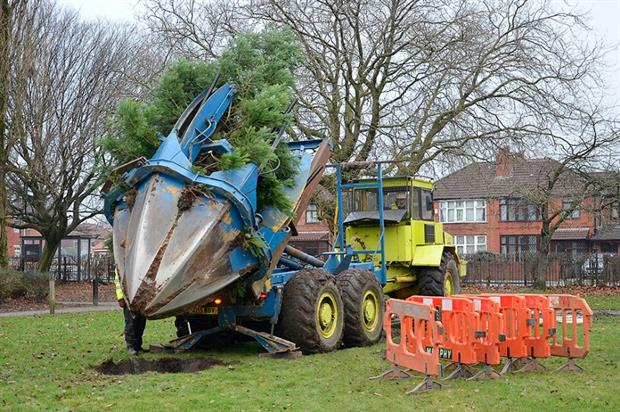 Glendale Civic Trees used the UK's largest tractor-mounted tree spade. Image: Glendale Civic Trees
