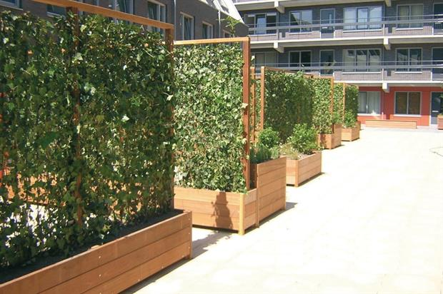 Green Screens installed in planters. Image: Green-tech