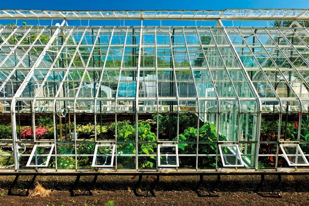 Glasshouses: council says horticultural local development order allows replacements, upgrades and extensions - image: Ingram