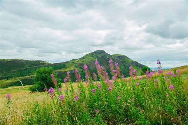 Greenspace Scotland and Groundwork join forces. Image: Pixabay