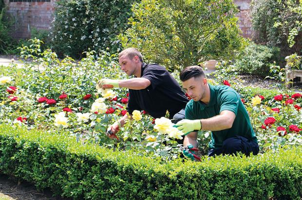 Training: standards established by employers to cover all sectors of horticulture