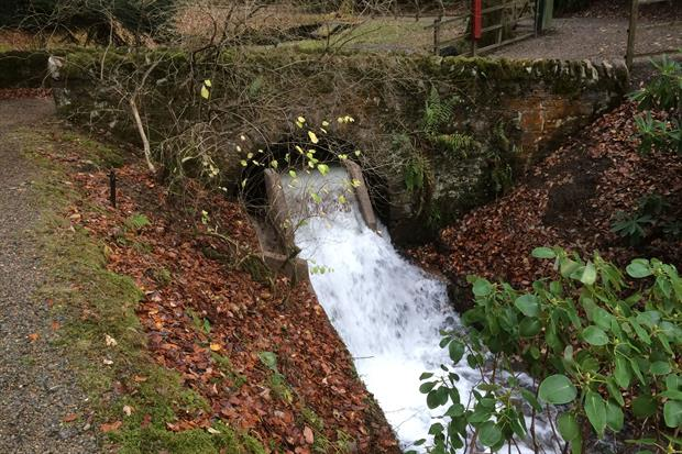 Part of the Dawyck hydroelectric system - image: RBGE