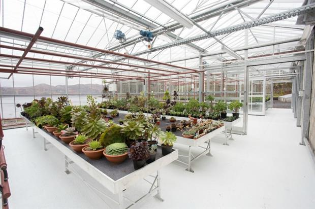 Inverewe's new glasshouse is part of a £2m investment. Image: National Trust for Scotland/ Alison White