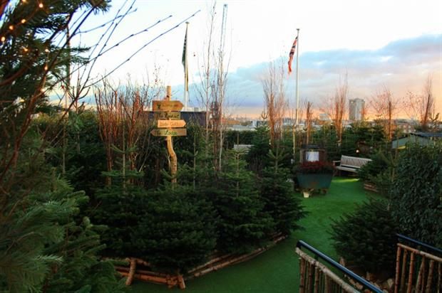 The John Lewis Christmas roof garden features 250 firs