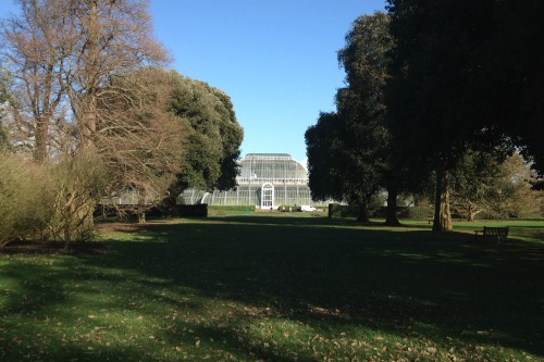 Royal Botanic Gardens Kew. Photo: HW