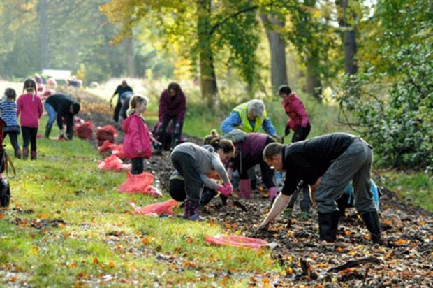 Gardeners and volunteers planting daffodils in 2012. Image: Lowther Castle and Gardens