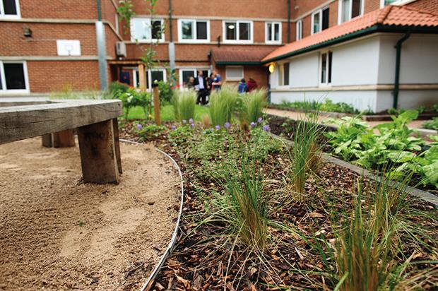 Health benefits: practitioners understand that the effects of gardening for patients can be very beneficial - image: HW