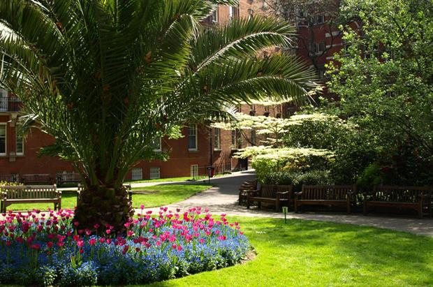 Mount Street Gardens. Image: Supplied