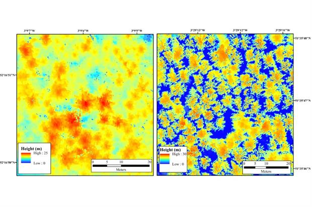 Uninfected (left) vs. infected plots - image: University of Leicester