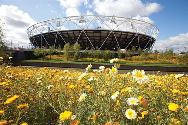 Wild flower meadows: backdrop for the 2012 Olympics