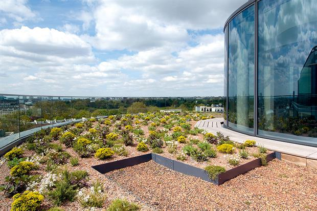 Regent's Place: green roofs are good to look at, provide welcome amenity space and offer biodiversity value - image: British Land