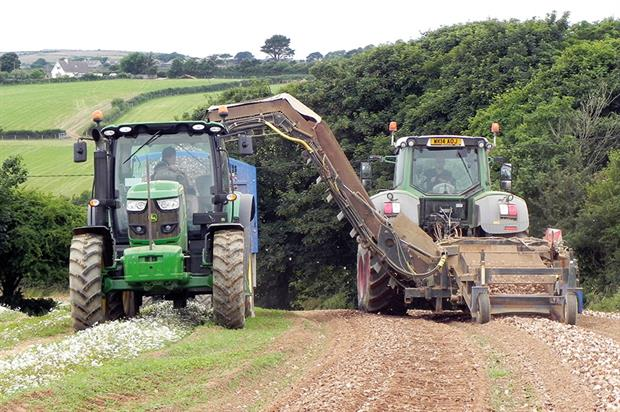 Rowe Farming: success growing potatoes and daffodils