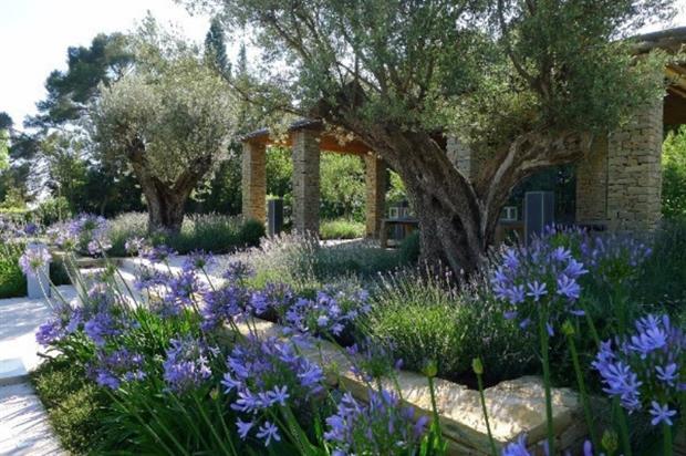 Tommaso Del Buono Takes Grand Award At Society Of Garden Designers