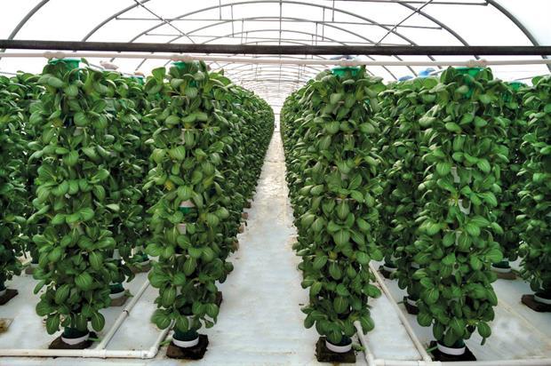 Saturn Bioponics: hydroponics explained at GrowQuip
