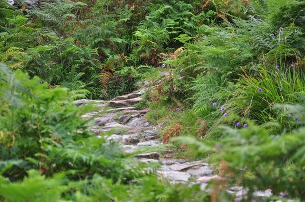 The Hidden Valley at Ballachulish in Scotland. Image: Pixabay