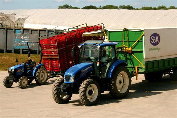 S&A Produce: breeding programme to ensure continuity of supply - image: HW