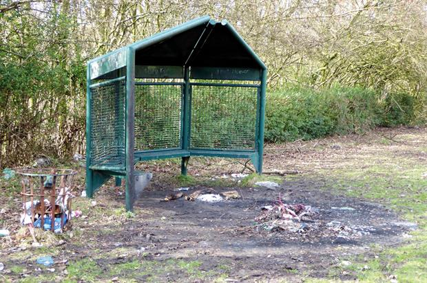 Parks are in serious danger of falling back into a state of decline and neglect. Image: Peter Neal
