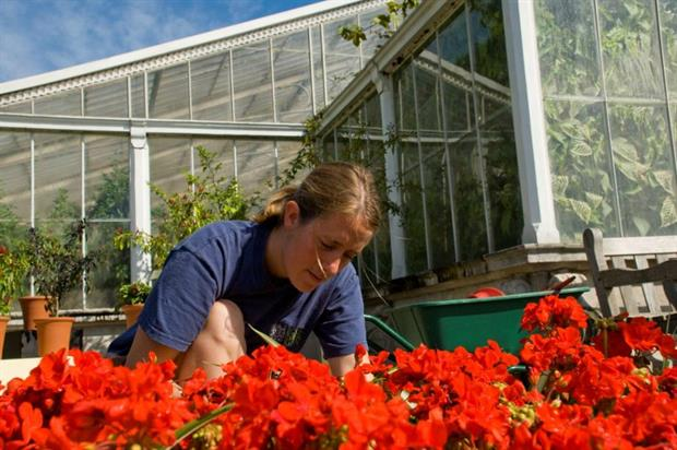 Landscape and horticulture Trailblazer apprenticeship standards approved. Image: Supplied
