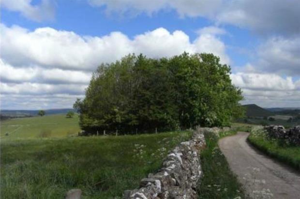 Wetton Wood. Image: Peak District National Park