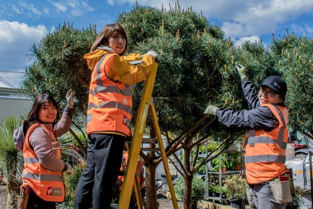 Landscapers working on the Winton Beauty of Mathematics garden. Image: Max HorberryImage: Max Horberry