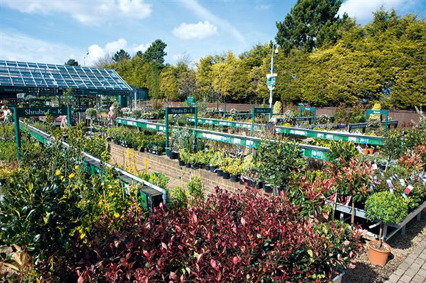 Planterias: garden centres fortunate that Brexit vote came when volumes were low but restocking will cost more - image: HW