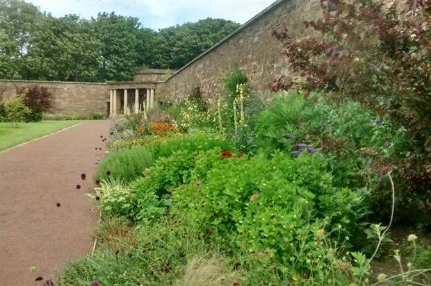 Herbaceous border at Amisfield Walled Garden. Image: Supplied