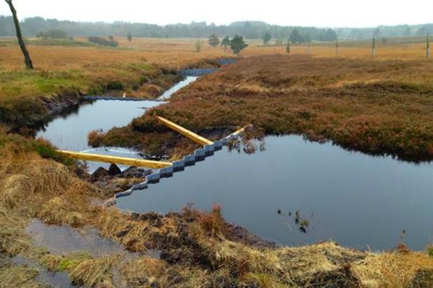 Buglife damming Scotland peat bogs. Image: Supplied