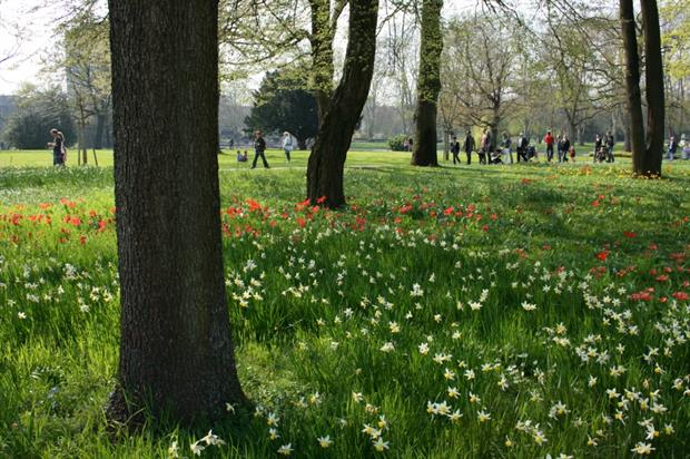 Funds still available for green space projects. Image: MorgueFile