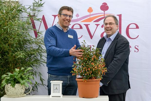 Adam Dunnett, Sales and Marketing Director at Wyevale Nurseries, with Marcus Cousins, Horticultural Manager at Aylett Nurseries, discussing Jacobinia 'Firefly'.