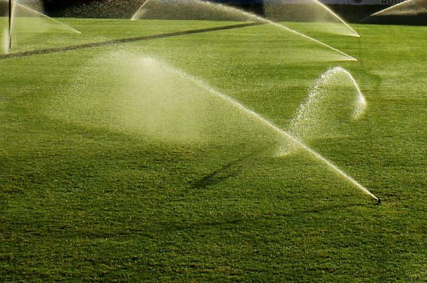 Landscape Garden Rugby : August turfcare tasks horticulture week
