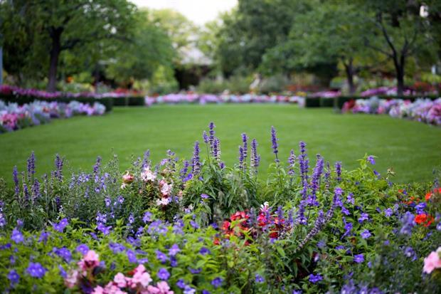 Love Parks awards to celebrate best park groups. Image: Pixabay