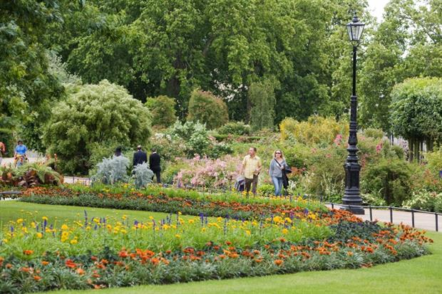 The Rose Garden at Hyde Park. Image (C) Phil Russell / The Royal Parks