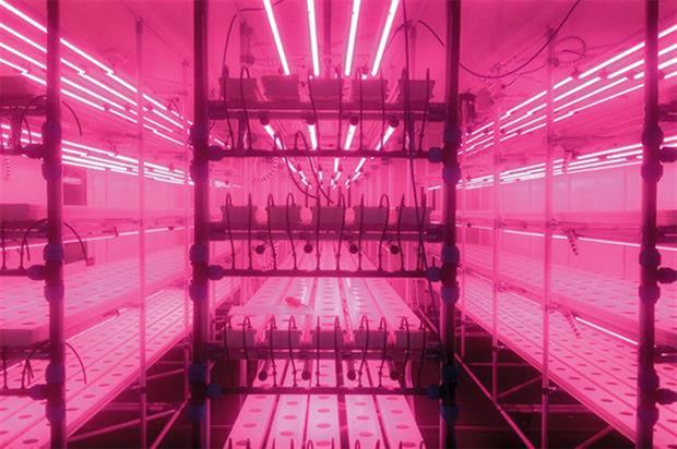 VydroFarm: with modular mobile racks and gully trays - image: HydroGarden